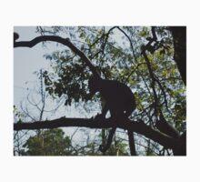 Capuchin monkey, Gauteng, South Africa Baby Tee