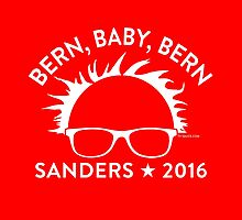 Bern, Baby, Bern! by TVsauce
