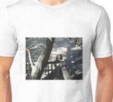 Capuchin Monkey 2, Gauteng, South Africa Unisex T-Shirt