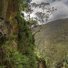Views from the Nettle Cave by Paul Duckett