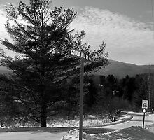 Winer on Gould Street - Johnson, VT by PASpencer