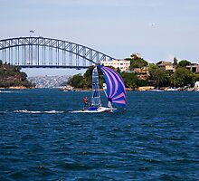 12 Foot Skiff on Sydney Harbour by Richard  Windeyer