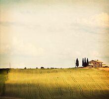 Toscana #2 by dgt0011