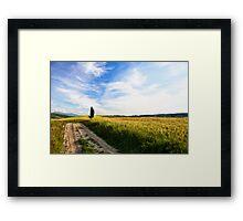Toscana #3 Framed Print