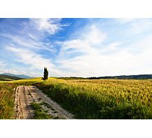 Toscana #3 Photographic Print