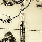 Texas Tea - Oil Derrick - Panola County, Texas by Betty Northcutt