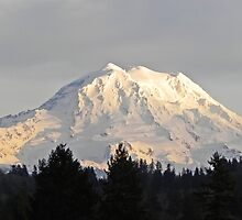 Fabulous Mount Rainier by Kathy Yates