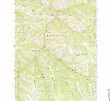 USGS Topo Map Oregon Bingham Springs 279045 1963 24000 by wetdryvac