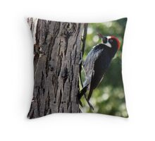Acorn Woodpecker ~ Male Throw Pillow