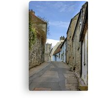 Looking up Tanhouse Brae Canvas Print
