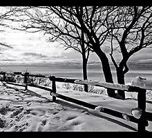 Winter Wonderland by Wendy  Meder