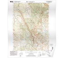 USGS Topo Map Oregon Coffeepot Creek 279387 2004 24000 Poster