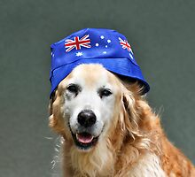 Australia Day by Ken Griffiths