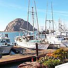 Morro Bay, California by ProsYiaYia