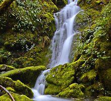 Merlin Falls by martingilchrist