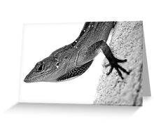 Redneck Larry in Black and White Greeting Card