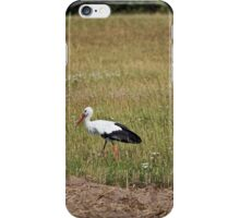 White Stork iPhone Case/Skin