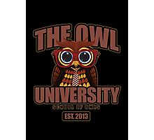 The Owl University 2 Photographic Print