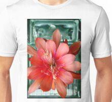 Flamingo Floaty Unisex T-Shirt