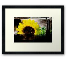 Beauty Once Was Framed Print