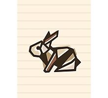 Paper Anigami Bunny Photographic Print