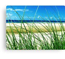 Sea & Seagrass - Byron Bay, NSW, Australia Canvas Print