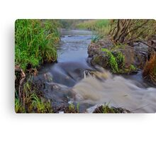 Apsley River.  24-1-11. Canvas Print