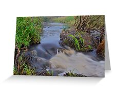 Apsley River.  24-1-11. Greeting Card