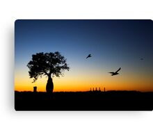 Boab silhouette - Broome summer night. Canvas Print