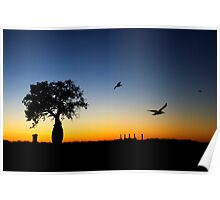 Boab silhouette - Broome summer night. Poster