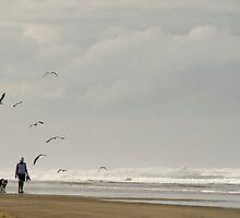 Beach Combers - Baylys Beach NZ by Jenny Dean