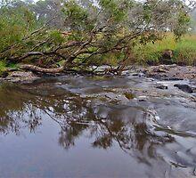 Apsley River.  24-1-11.    no2. by Warren  Patten