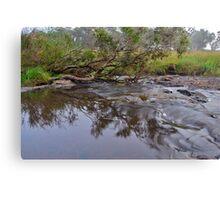 Apsley River.  24-1-11.    no2. Canvas Print