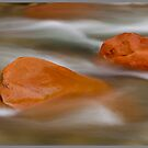 Fluidity (Panoramic) by Melissa Seaback