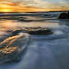 Last of the Rocks by Michael Treloar