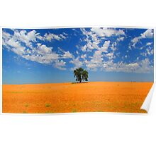Lone Tree in Outback Victoria Poster