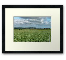 Country. Framed Print
