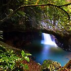 Natural Arch - Springbrook National Park by Beth  Wode