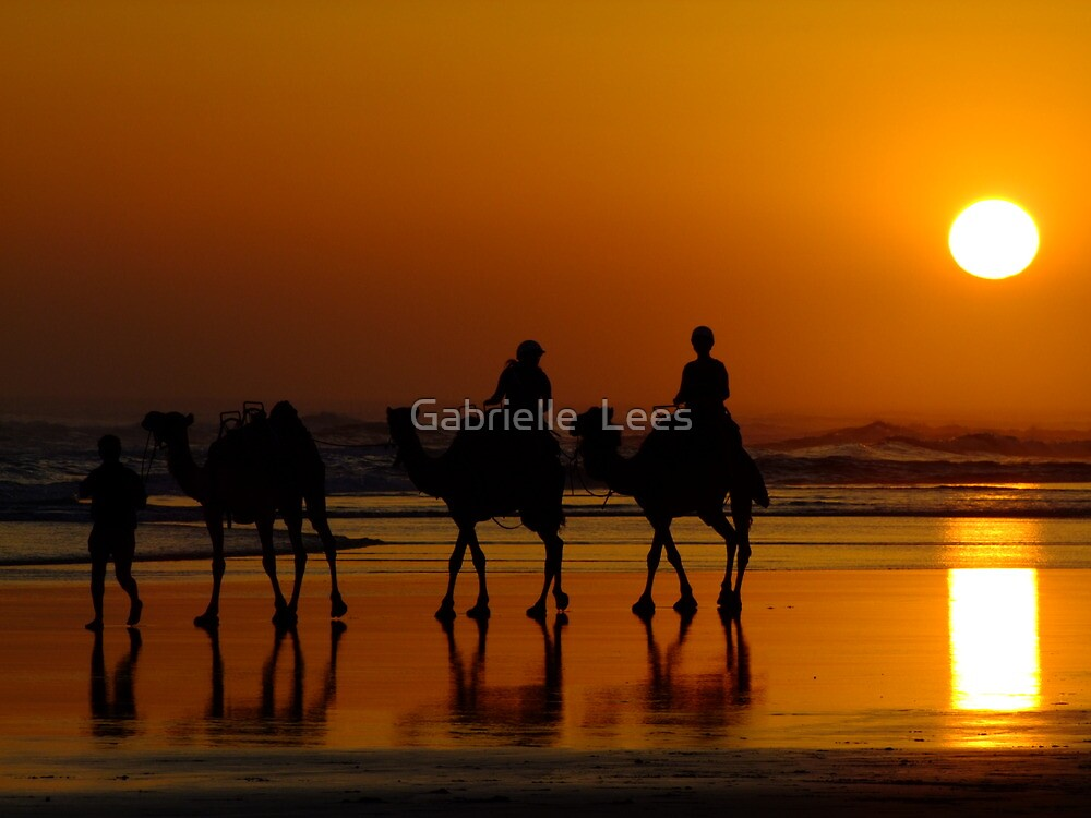 Camel Riding On Sunset by Gabrielle  Lees