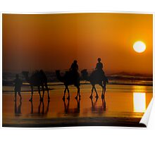 Camel Riding On Sunset Poster