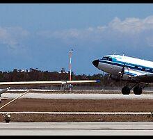 Big Plane / Little Plane by mimsjodi