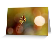 Rainbow Moss Drop Greeting Card