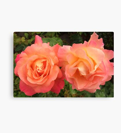 Beautiful Couple Canvas Print