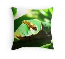 Orchard Swallowtail Caterpillar 2 Throw Pillow