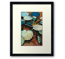 Frog's Hideaway Framed Print