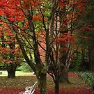 In the Autumn by KiriLees
