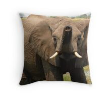 too hot ? you need a shower Throw Pillow
