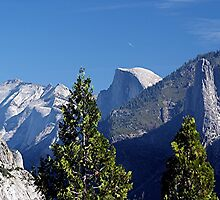 Half Dome - Yosemite, CA by Loree McComb