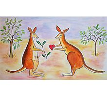 Adorable Kangaroos in love Photographic Print