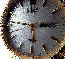 Tempus fugit (Time Flies) by Robert Gipson